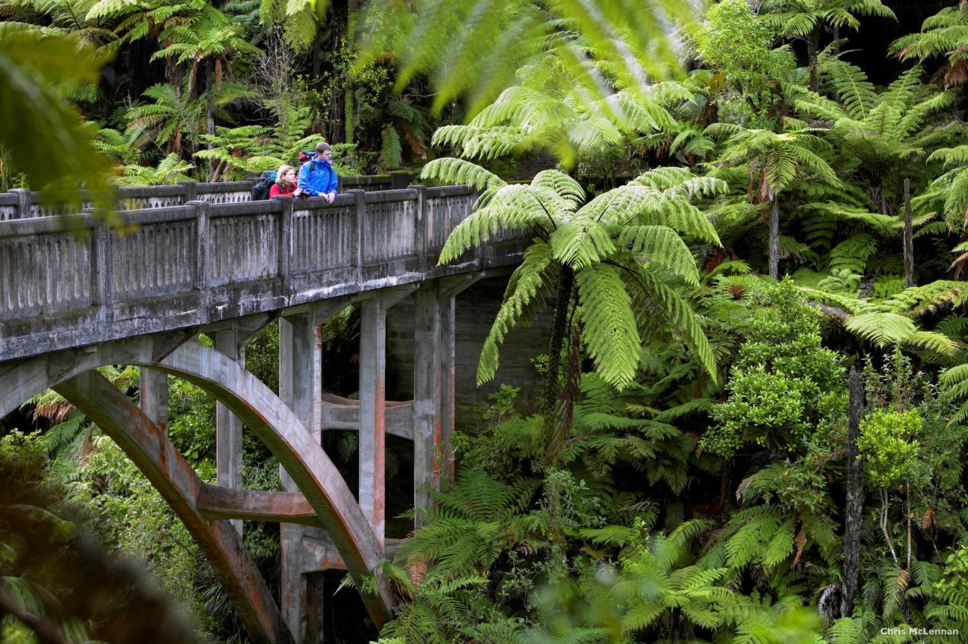 0jxHHDzLQtyiAa9K45Jh_AT44-Whanganui-National-Park-Whanganui-Chris-McLennan-1